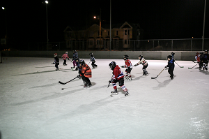 hockey outdoor groups wb