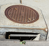 sewer grate 2